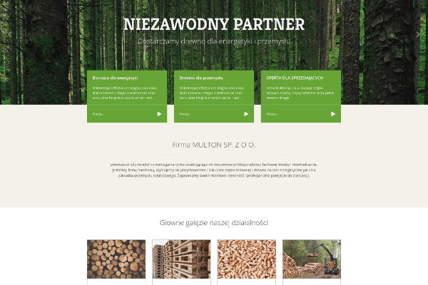 Projekt strony internetowej multon.pl
